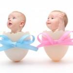 To babyer kigger op fra hver deres æggeskal